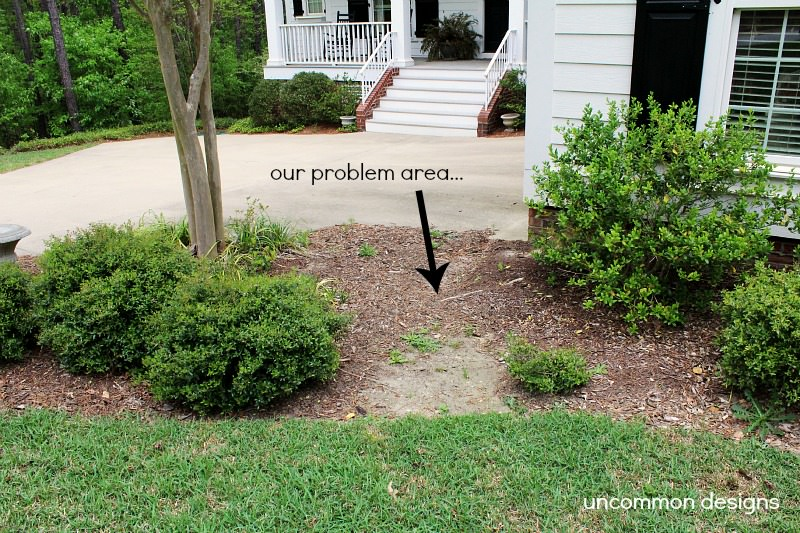 Home-Depot-Problem-Area