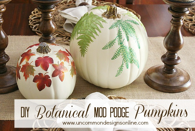 DIY_Botanical_mod_podge_faux_pumpkins