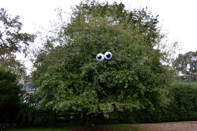 Eyeballs in a Tree by Princess and the Frog