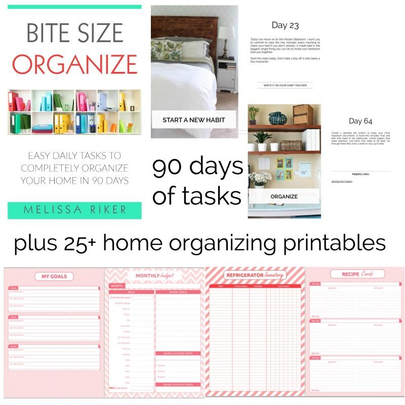 bite-size-organize